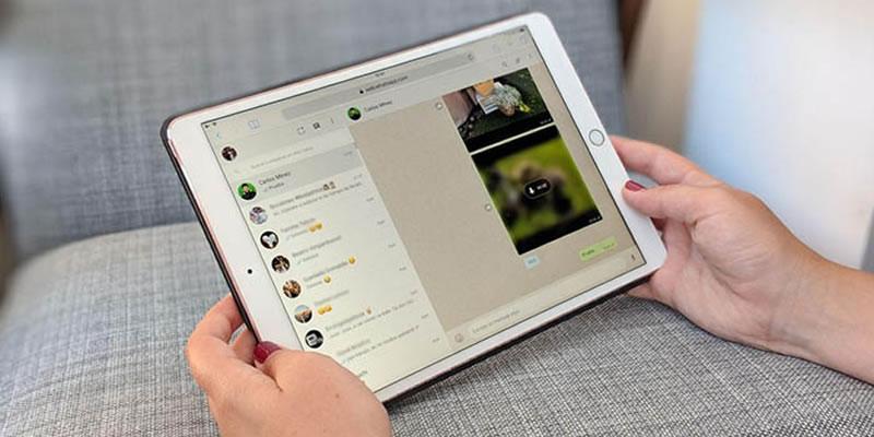 Reunião online com WhatsApp